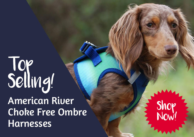 Shop American River Ombre