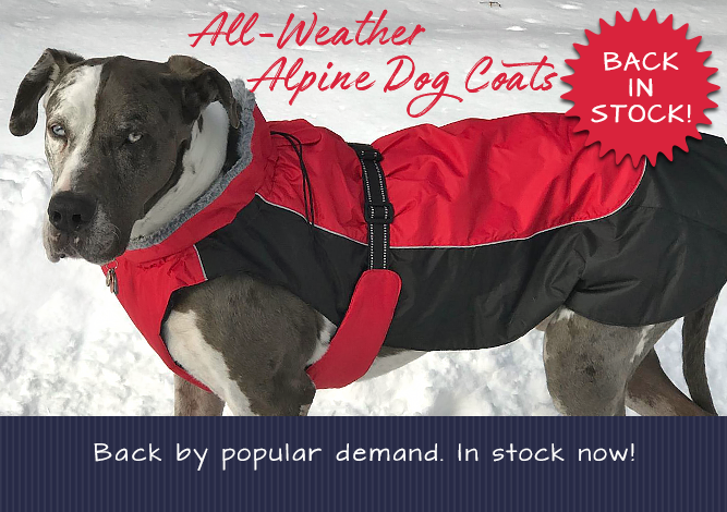 All-Weather Alpine Dog Coats Back by Popular Demand